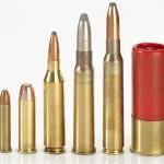 Статья 8. Государственный кадастр гражданского и служебного оружия и патронов к нему
