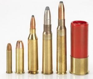 Государственный кадастр гражданского и служебного оружия и патронов к нему