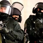 Статья 11. Право на приобретение оружия государственными военизированными организациями