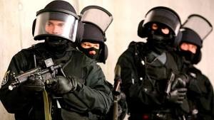 Право на приобретение оружия государственными военизированными организациями