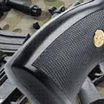 Статья 17. Ввоз в Российскую Федерацию и вывоз из Российской Федерации оружия и патронов к нему