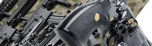 Ввоз в Российскую Федерацию и вывоз из Российской Федерации оружия и патронов к нему